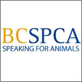 BC SPCA - Speaking For Animals